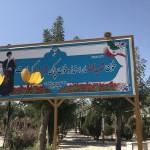 قاب عشق - گلزار شهدای شهر اراک
