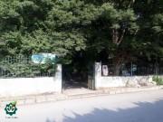 گلزار شهدای روستای دریاسر شهرستان محمودآباد - آستان مقدس امامزاده سید بهاءالدین